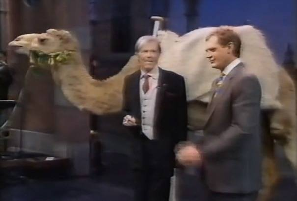 The camel Terry had to source for Peter O'Toole